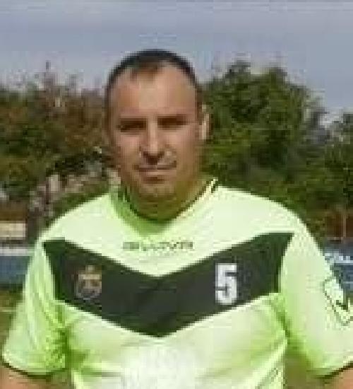 Sarpe Mircea - Mihai