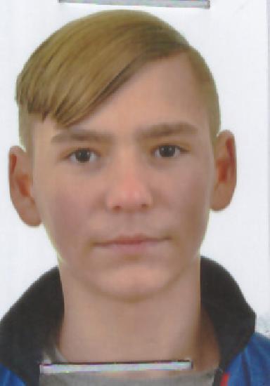 Grigor Alin David