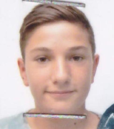 Pop Alexandru Ionuț