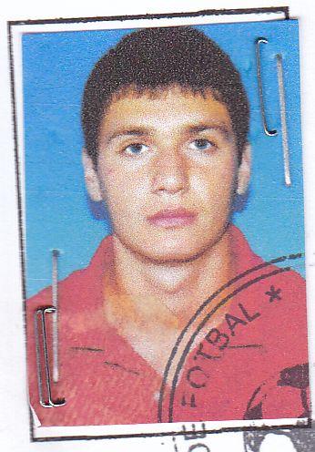 Mihailescu Traian Alexandru