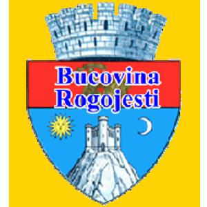 ACS Bucovina Rogojesti