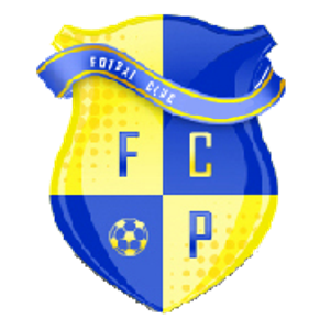 FC Paltinis