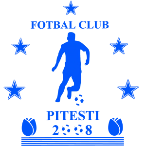 C S F C Pitesti 2008