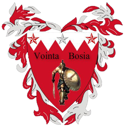 Voința Bosia