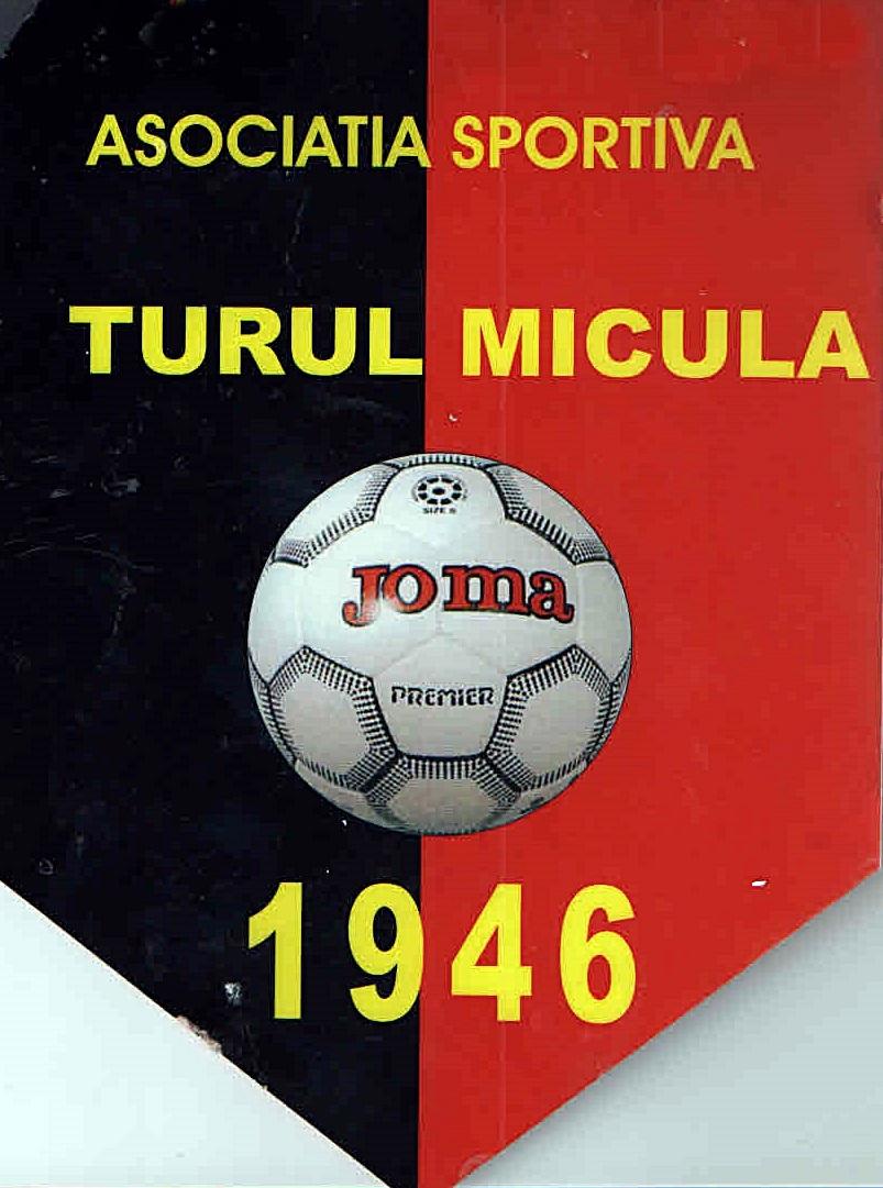 Turul Micula