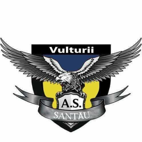 Vulturii Santău 2013