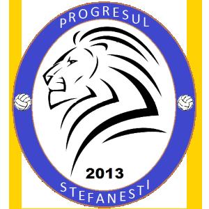 ACS Progresul Stefanesti