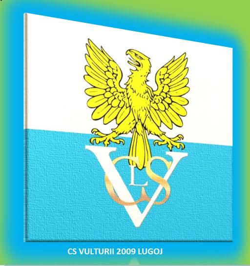 CSM LUGOJ II