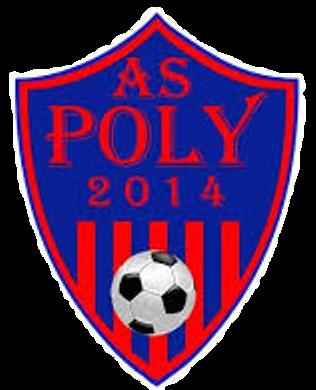 A.S. Poly 2014 Iași