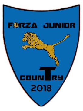 Forza Junior Costuleni