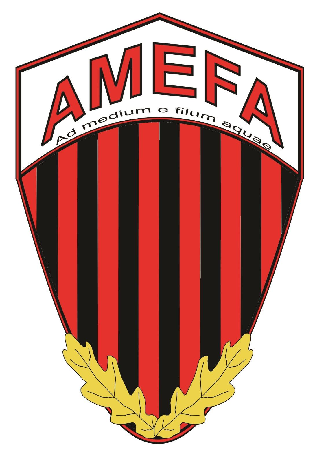 A.S. AMEFA Cluj Napoca