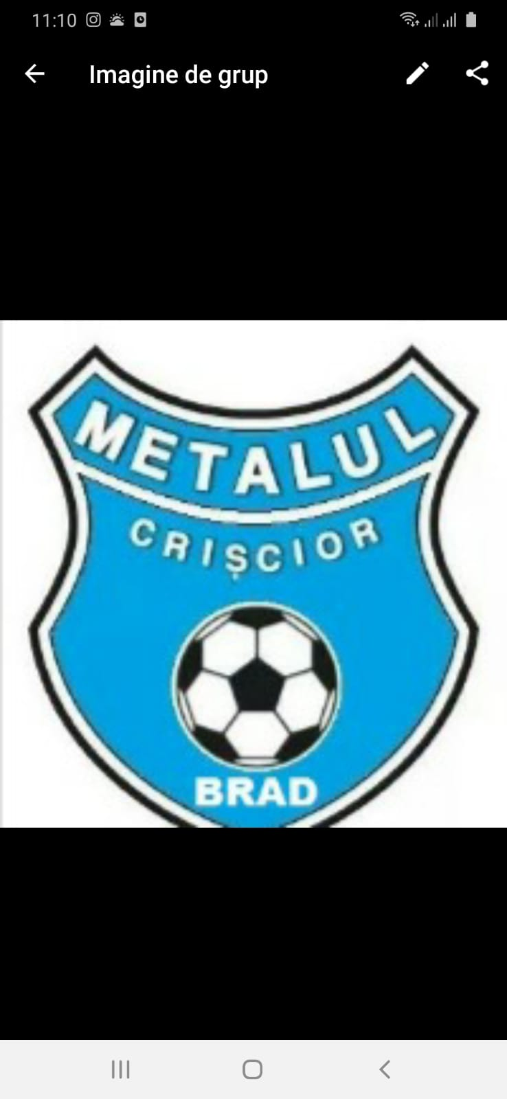 AS Metalul Crişcior Brad