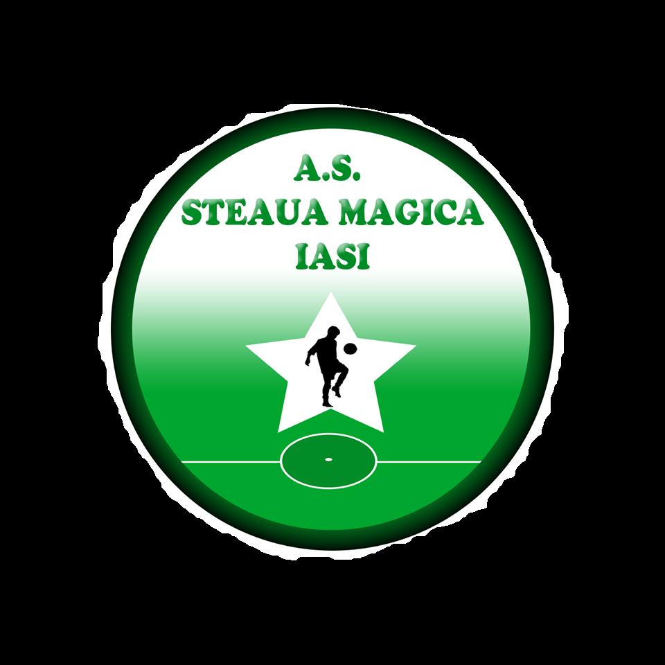 Steaua Magică Iași 2010