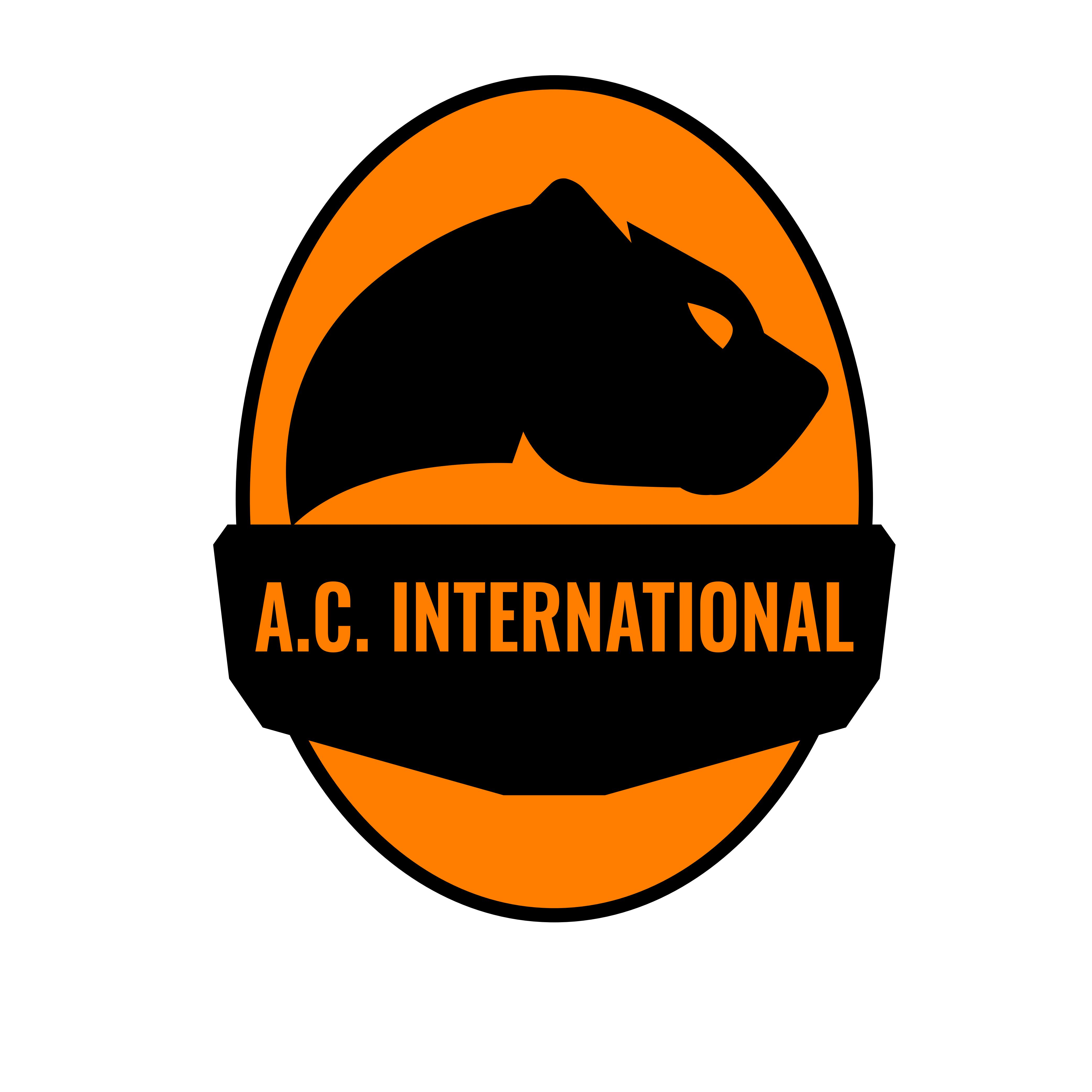 A.S. A.C. International Brasov