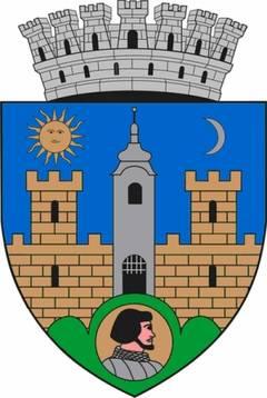 Consiliul Local Sfantu Gheorghe