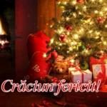 Sfinte Sarbatori de Iarna Fericite!