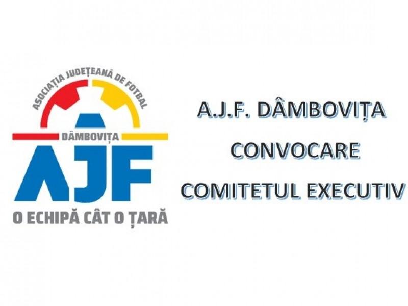 Convocare Comitet Executiv - 13 aprilie