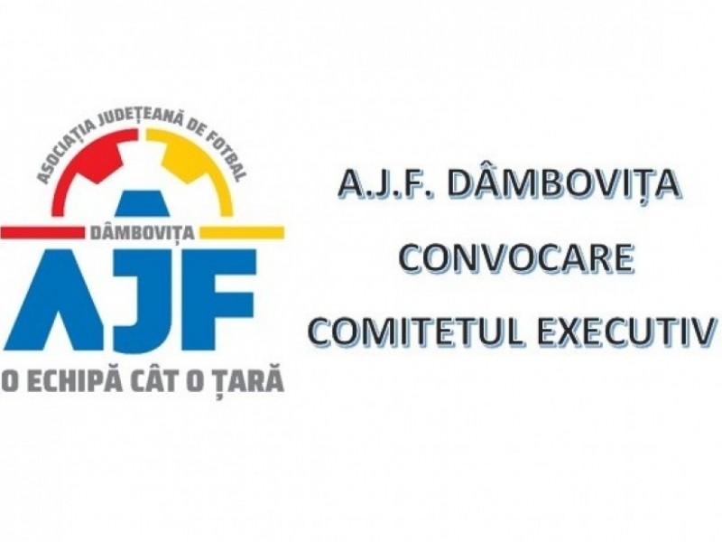 Convocare Comitet Executiv -  29 iunie