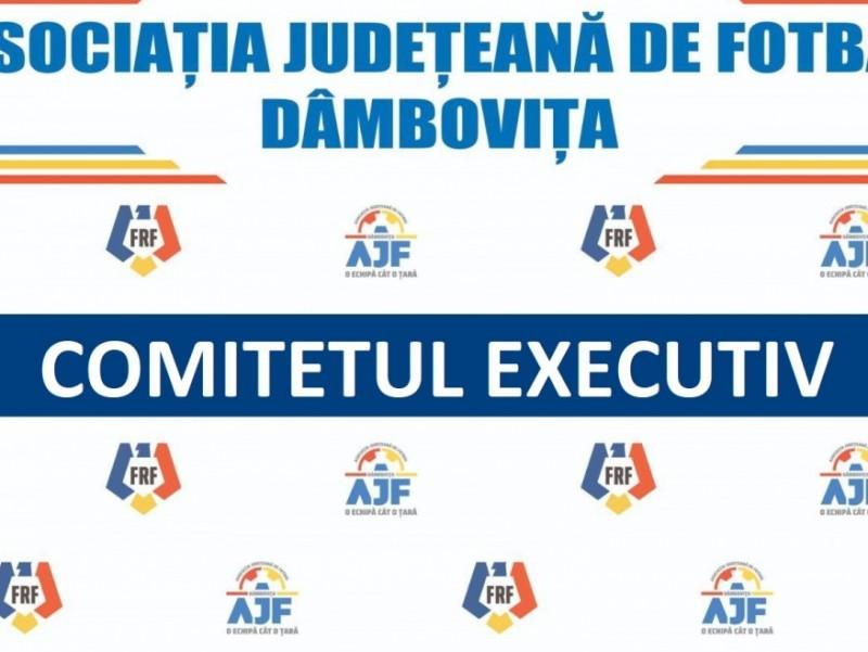 Hotărârea Comitetului Executiv 29.06.2021