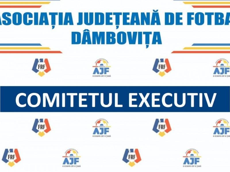 Hotărârea Comitetului Executiv din data de 04.08.2021