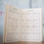 PROGRAMARE FRF - Maramureșul, la vize în 19 februarie