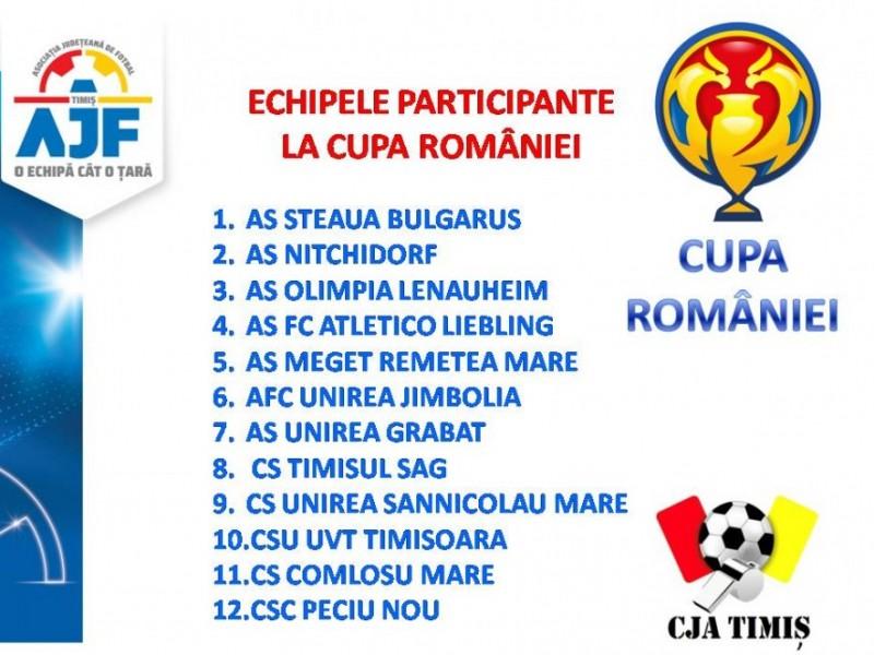 Cupa Românei - Faza Județeană